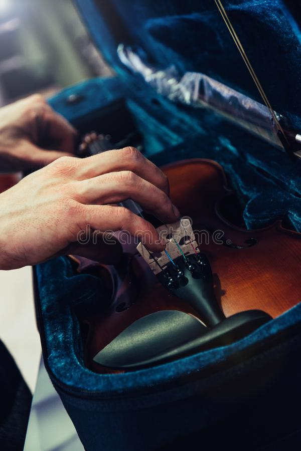 Mani che prendono o che tengono violino di risparmio sul suo caso Cassa blu del violino del velluto fotografia stock