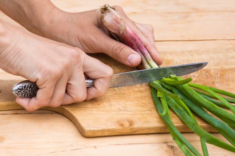 Mani che tagliano cipolla a pezzi verde sul tagliere di legno immagini stock libere da diritti