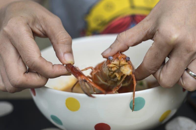Mani che tengono gamberetto cucinato su minestra di pasta Tom Yum immagine stock libera da diritti