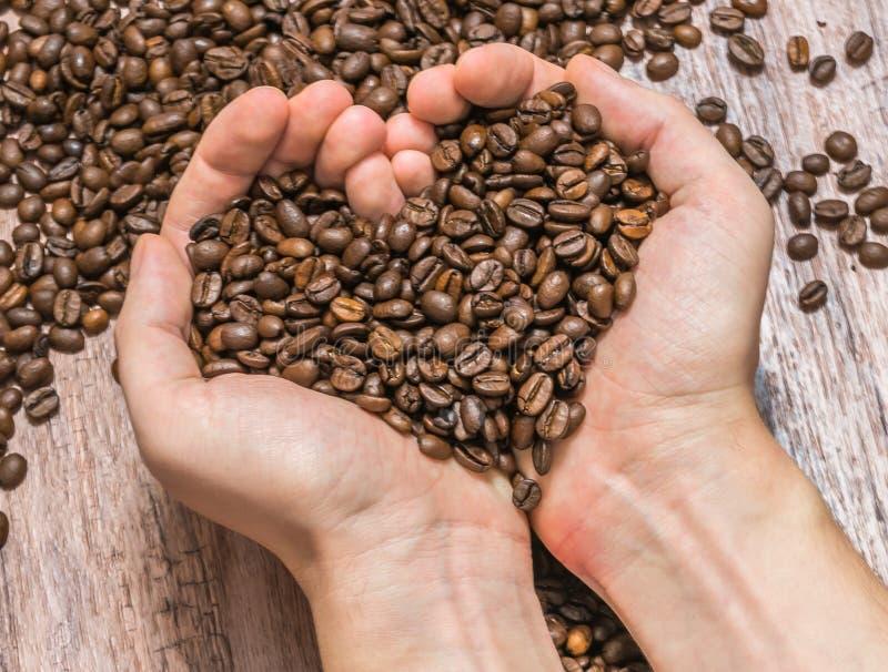 Mani che tengono i chicchi di caffè - forma del cuore fotografia stock libera da diritti