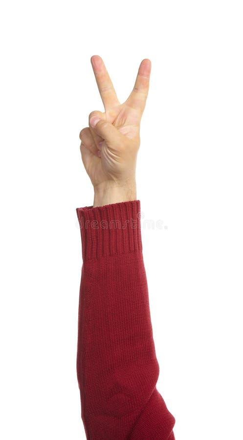 Mani con i gesti fotografia stock libera da diritti