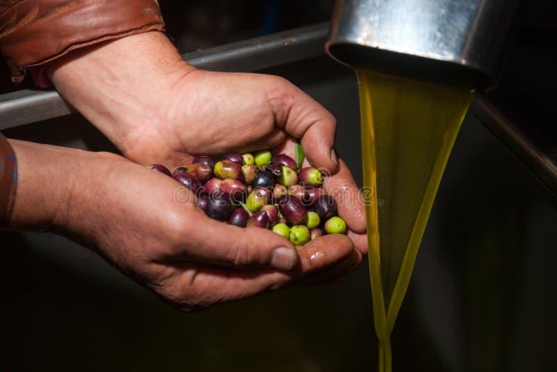 Mani con le olive ed il versamento dell'olio immagini stock libere da diritti