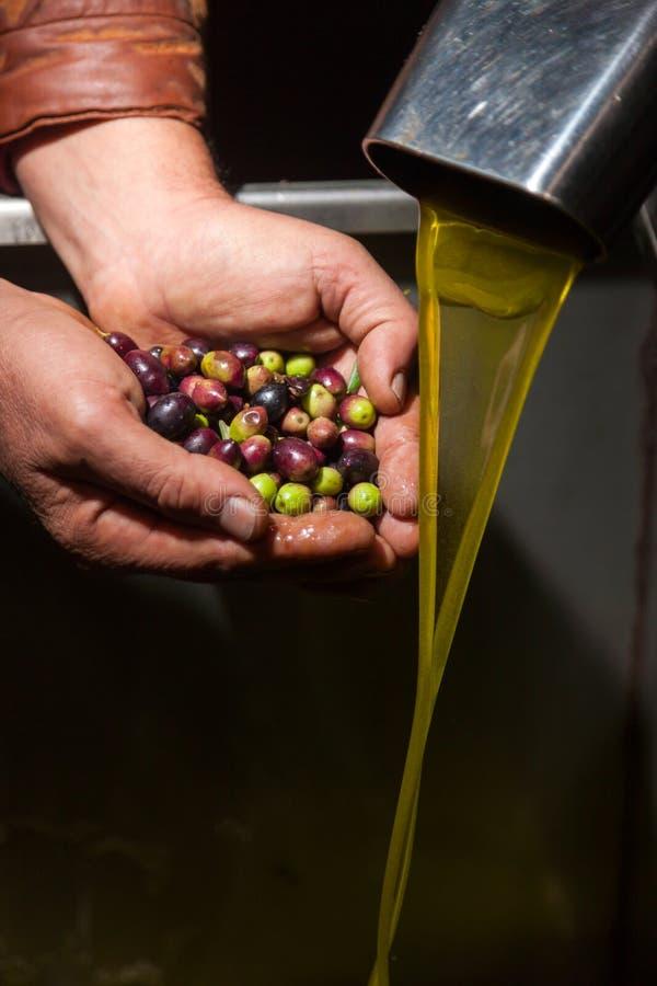 Mani con le olive ed il versamento dell'olio fotografia stock