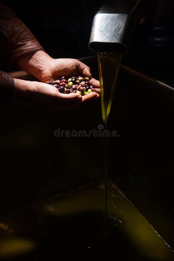 Mani con le olive ed il versamento dell'olio fotografia stock libera da diritti
