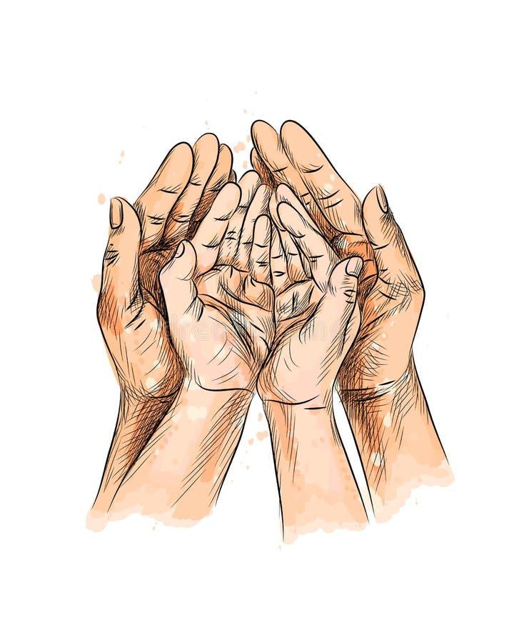 Mani del bambino della famiglia, mano neonata del bambino nelle mani di Parents del padre della madre illustrazione vettoriale