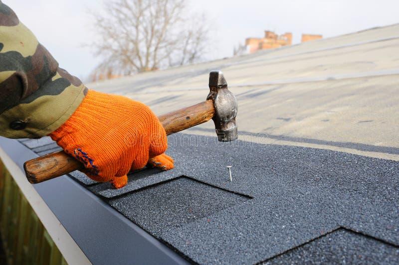Mani del lavoratore che installano le assicelle del tetto del bitume Martello del lavoratore in chiodi sul tetto Il Roofer sta ma fotografie stock