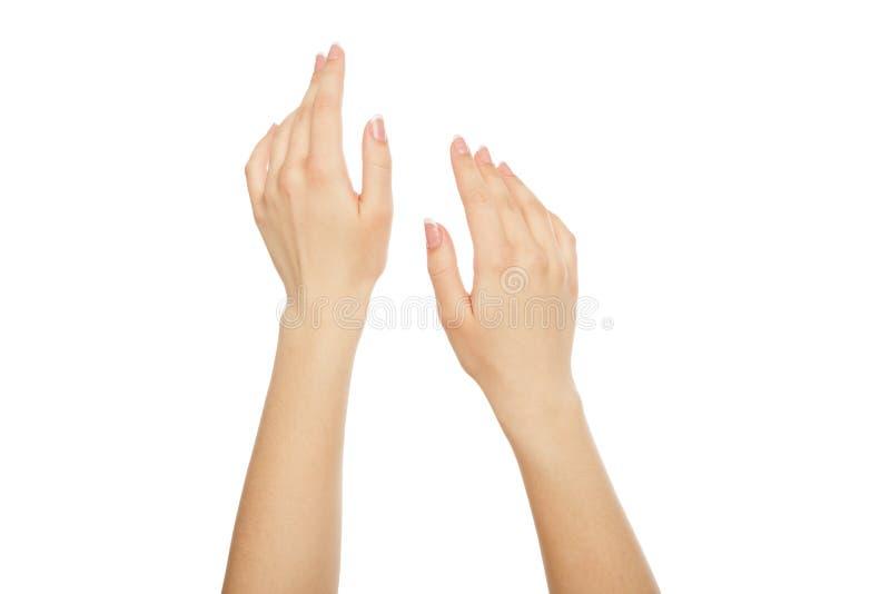 Mani del ` s della donna con il manicure francese, il raccolto, ritaglio immagine stock