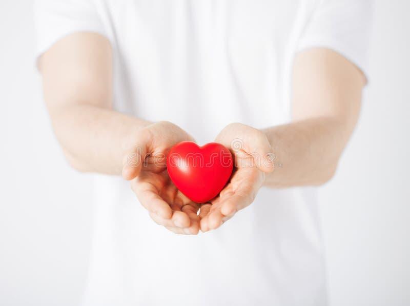 Mani dell'uomo con cuore fotografie stock libere da diritti