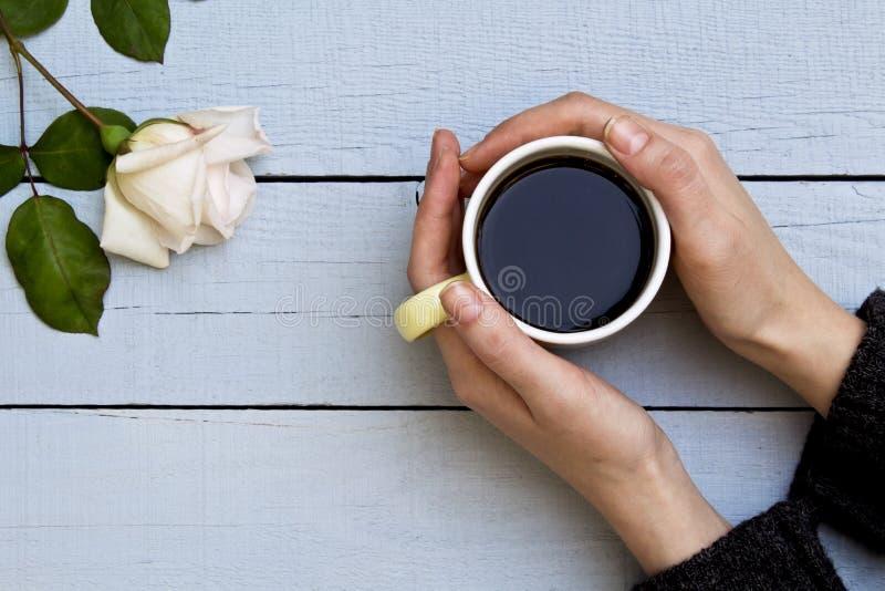 Mani della donna che tengono la tazza di caff? con la rosa bianca su fondo di legno fotografia stock