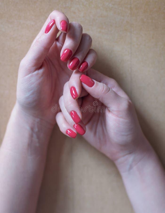 Mani della donna con il manicure rosso fotografia stock