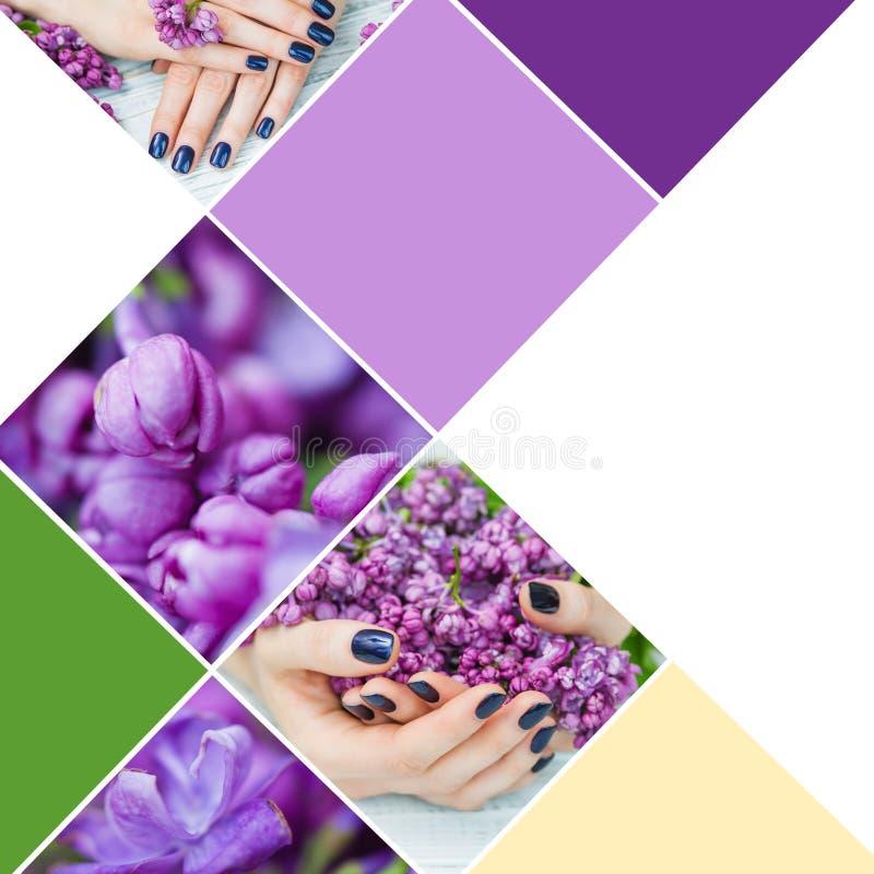 Mani della donna del collage con il manicure blu scuro immagini stock