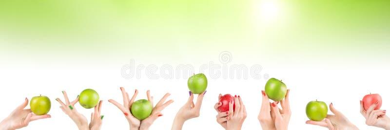 Mani della donna messe con le mele su fondo verde astratto immagine stock libera da diritti