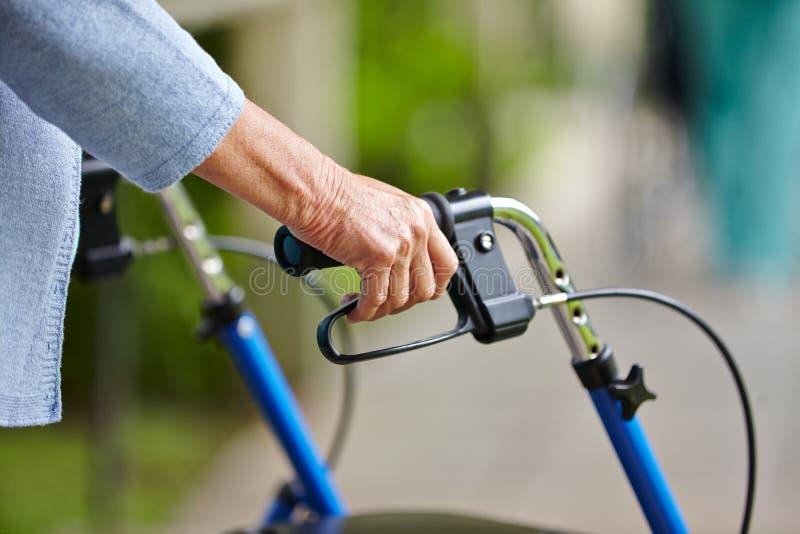 Mani della donna senior sul camminatore immagine stock