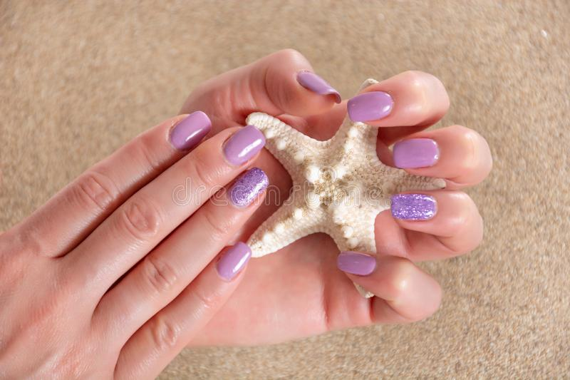 Mani della ragazza con un manicure lilla di colore che tiene le stelle marine e sabbia di mare nei precedenti immagini stock