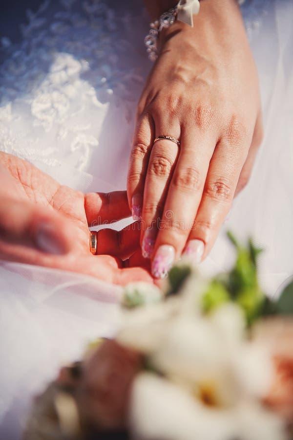 Mani della sposa e dello sposo fotografia stock libera da diritti