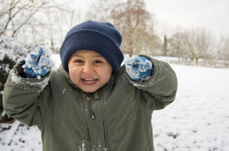 Mani dello Snowy immagine stock