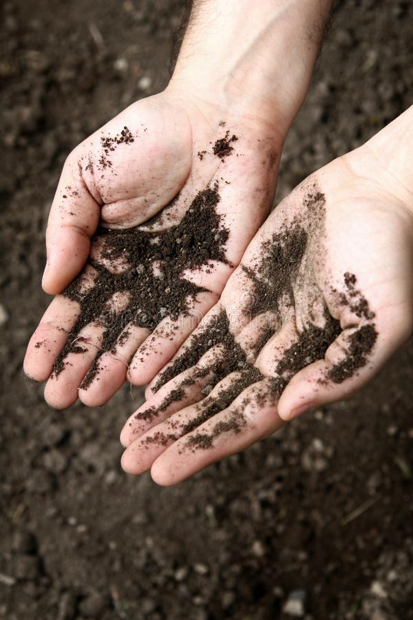 Mani di un uomo coperto di suolo nero su un fondo di suolo immagini stock