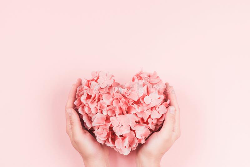 Mani e fiori immagini stock libere da diritti