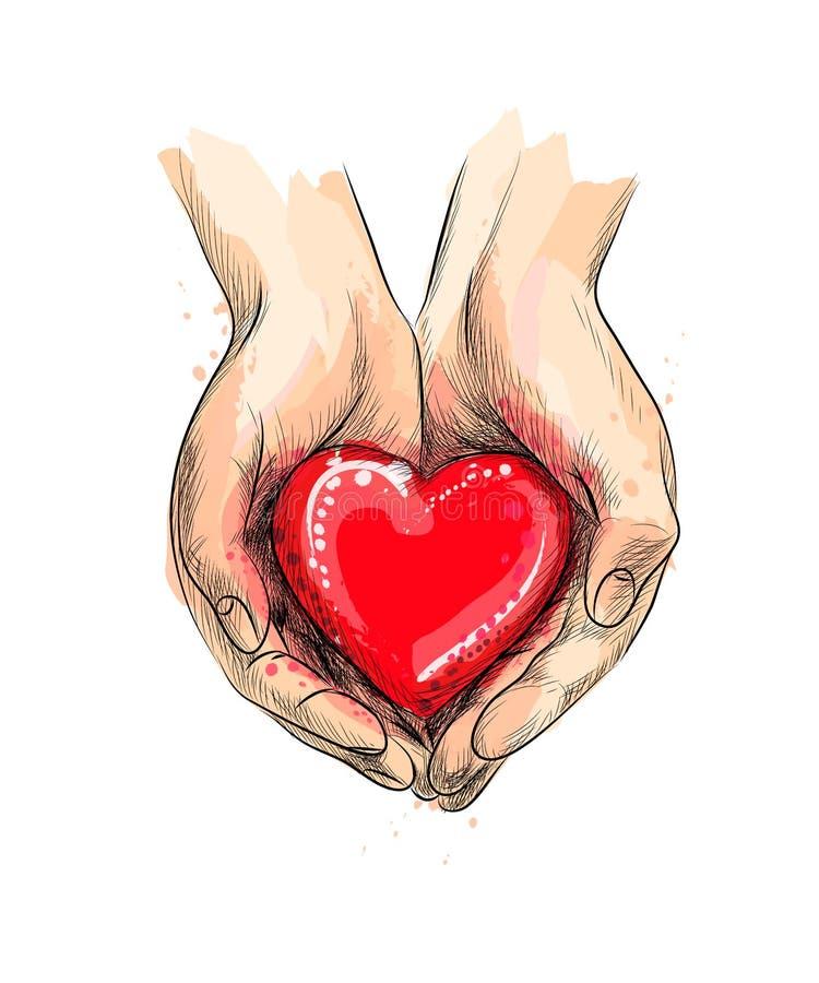 Mani femminili che danno cuore rosso da una spruzzata dell'acquerello illustrazione vettoriale