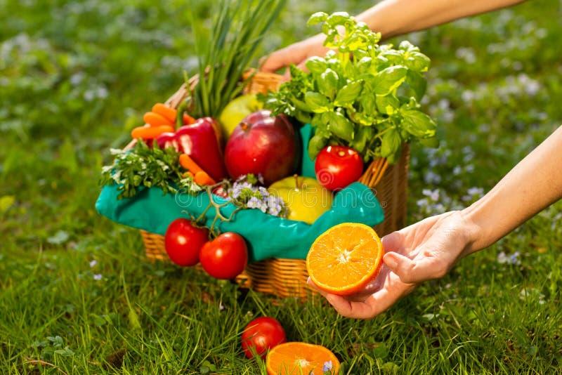 Mani femminili che tengono canestro di vimini con le verdure e la frutta, fine su fotografia stock