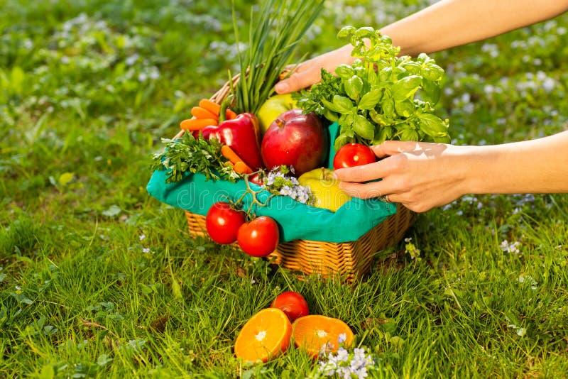 Mani femminili che tengono canestro di vimini con le verdure e la frutta, fine su immagine stock