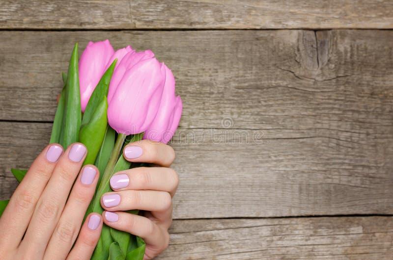 Mani femminili con i chiodi rosa che tengono i tulipani rosa fotografia stock