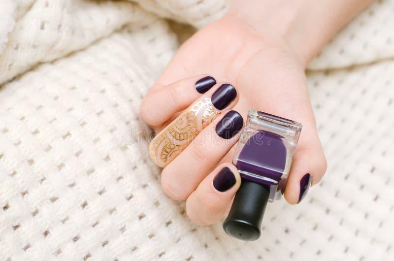 Mani femminili con progettazione porpora scura del chiodo immagine stock