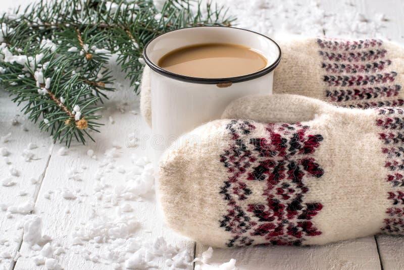 Mani femminili in guanti che tengono tazza di cioccolata calda immagine stock