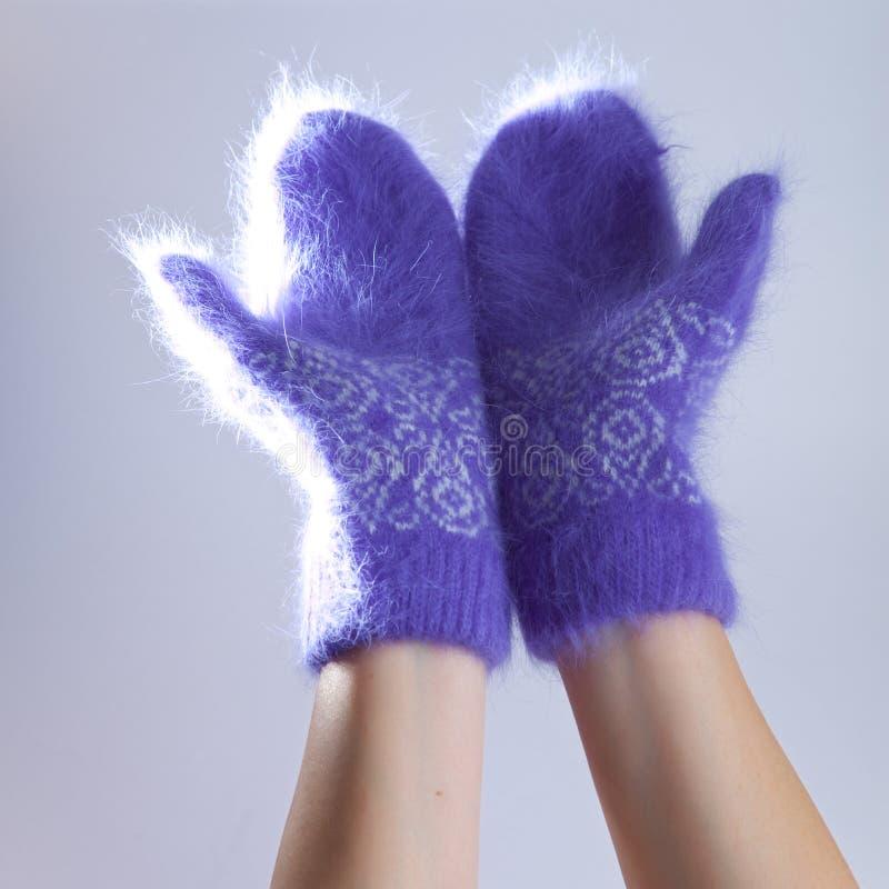 Mani in guanti lilla lanuginosi. Fine su fotografia stock