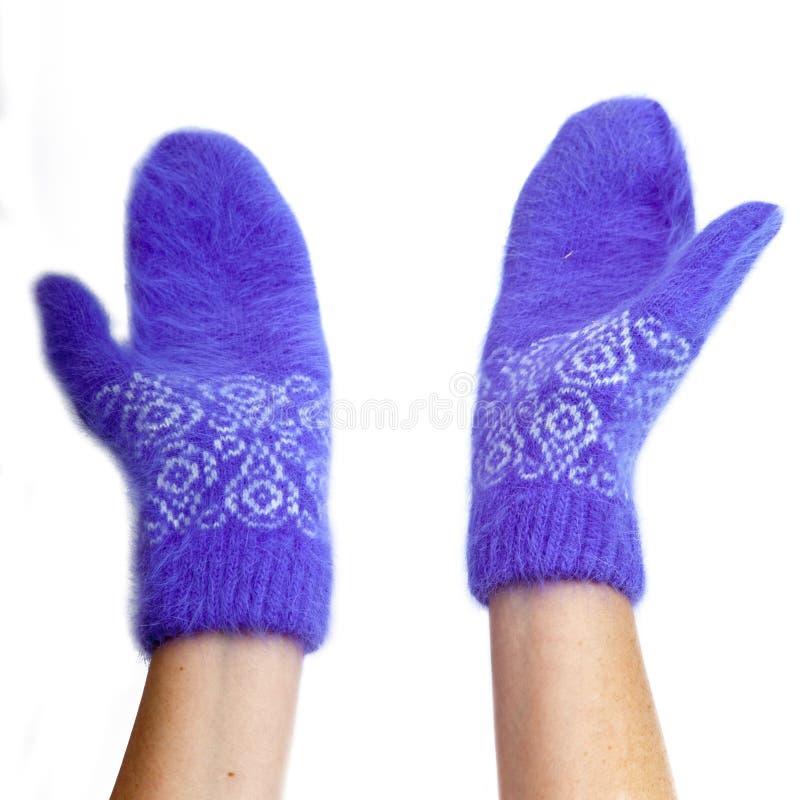 Mani in guanti lilla lanuginosi su un fondo bianco immagine stock libera da diritti