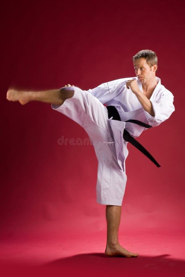 Mani in karate kimono kicking. Man kicking in karate kimono with black obi belt and red background stock photography