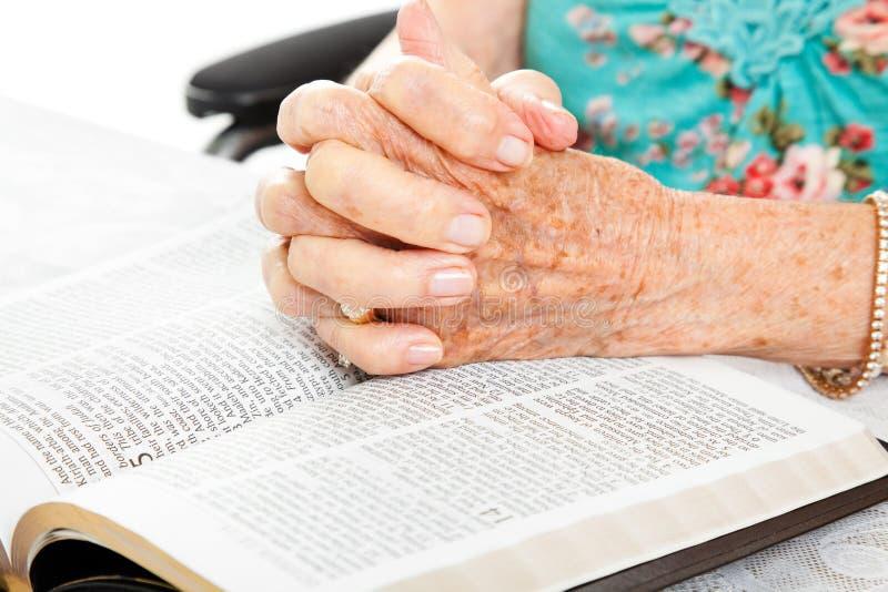 Mani maggiori di preghiera sulla bibbia fotografia stock libera da diritti