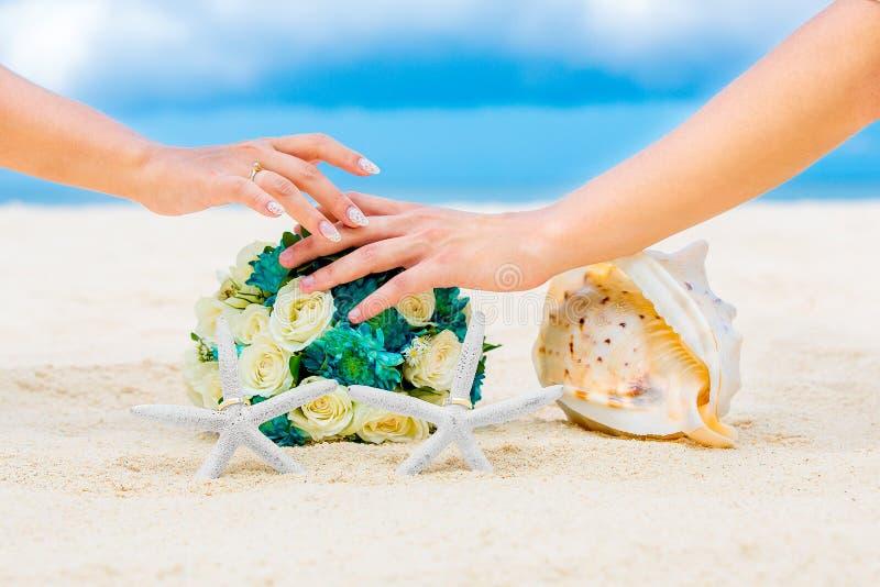 Mani maschii e femminili, due fedi nuziali con due stelle marine, wedd fotografie stock