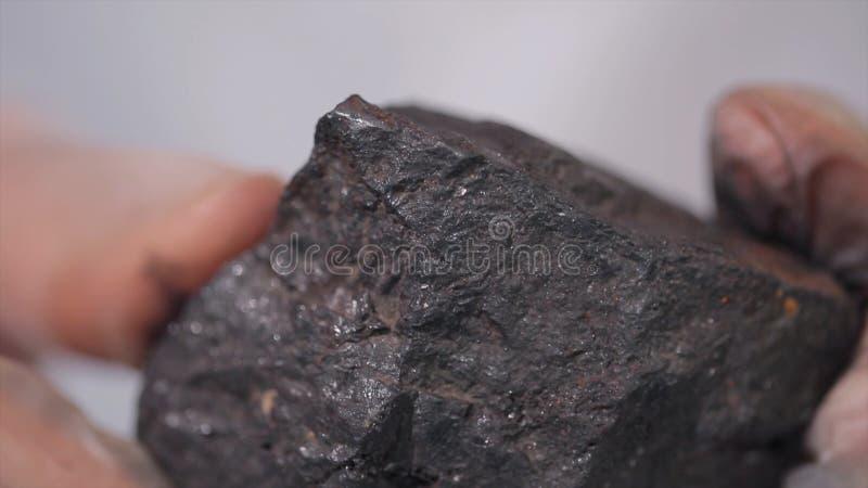 Mani maschii in guanti che tengono carbone Scienziato con un campione di carbone Carbone nero in mano del ` s del minatore immagini stock