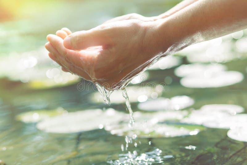 Mani nella forma a coppa che ottiene acqua da un lago o da una fontana fotografia stock