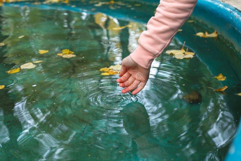 Mani nella forma a coppa che ottiene acqua da un lago o da una fontana fotografia stock libera da diritti