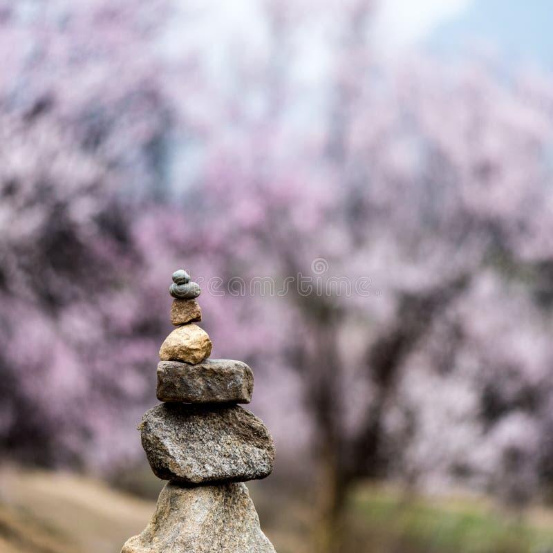 Mani paryer stones. Mani prayer stones with tibetan wild peach blossom in Linzhi, Tibet stock photo