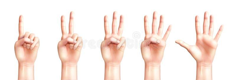 Mani realistiche che contano uno - cinque illustrazione vettoriale