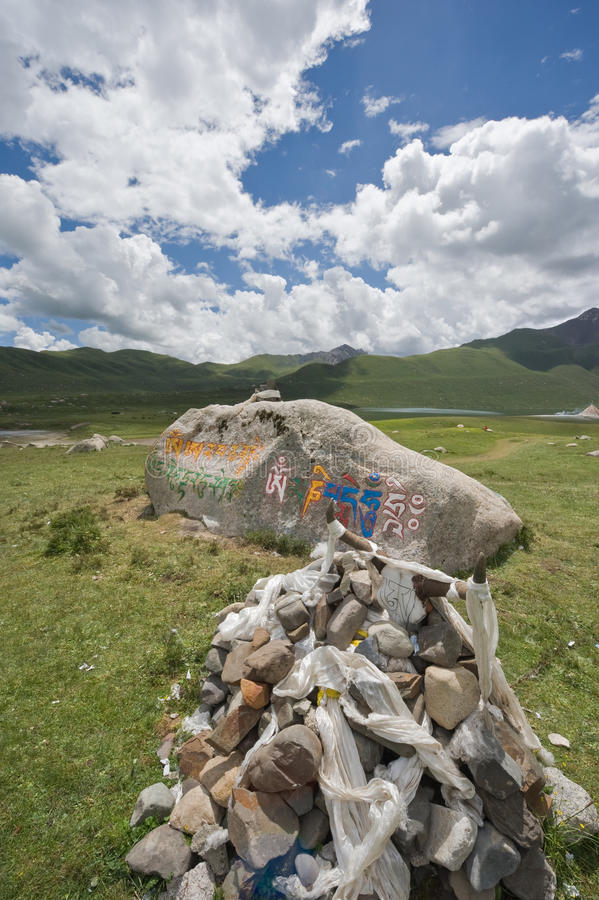 Download Mani stones in Tibet. stock photo. Image of plateau, bull - 11658558