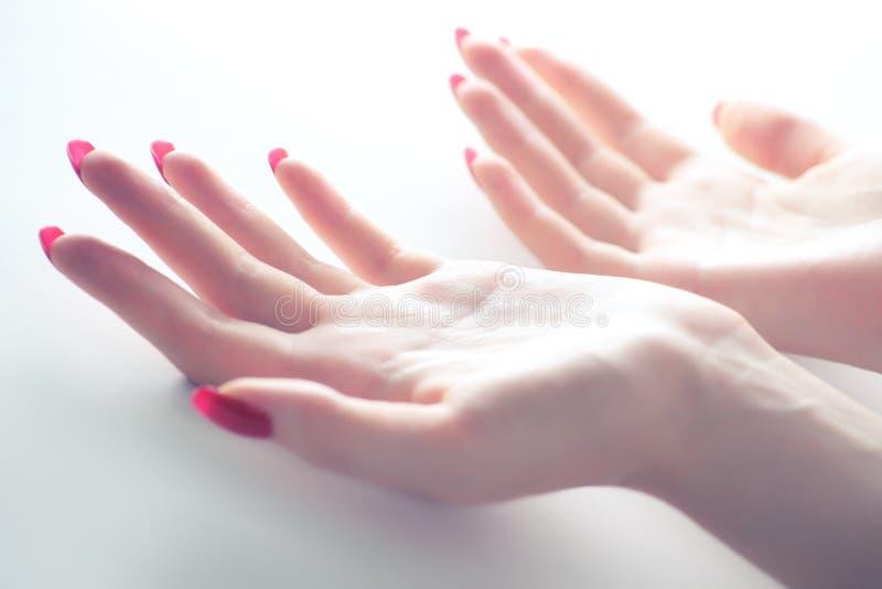 Mani tenere della donna fotografia stock