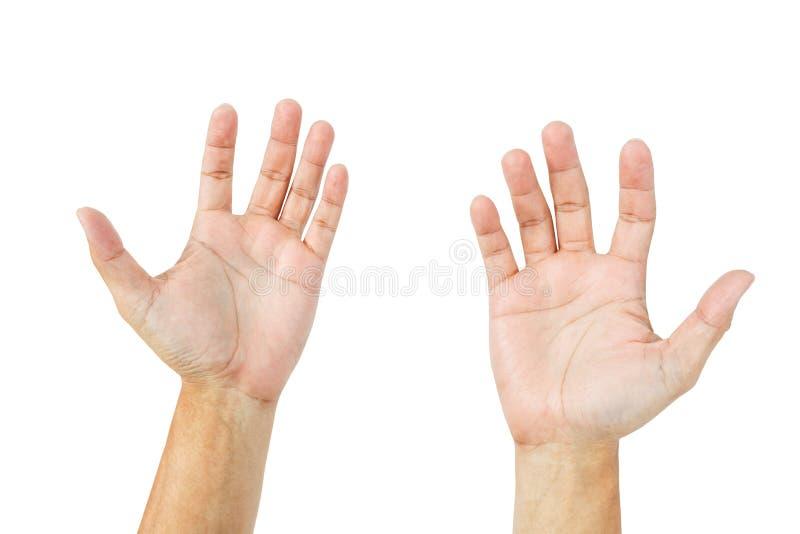 Mani vuote dell'uomo isolate su bianco fotografia stock