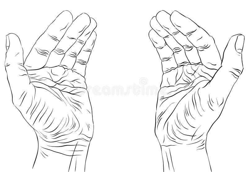Mani vuote proteggenti con il posto per un certo piccolo oggetto, detaile illustrazione vettoriale