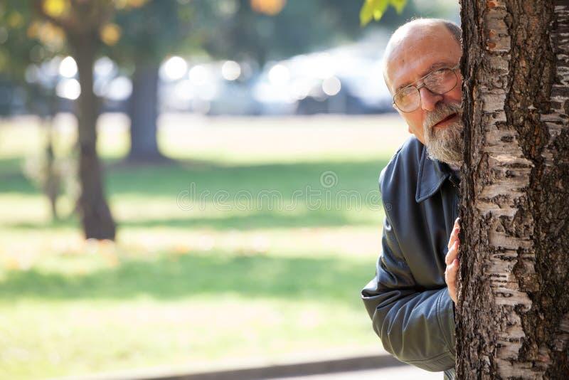 Maniaco del acosador del sexo Mirón y espía Hombre que mira a escondidas la ocultación detrás de árbol imagenes de archivo
