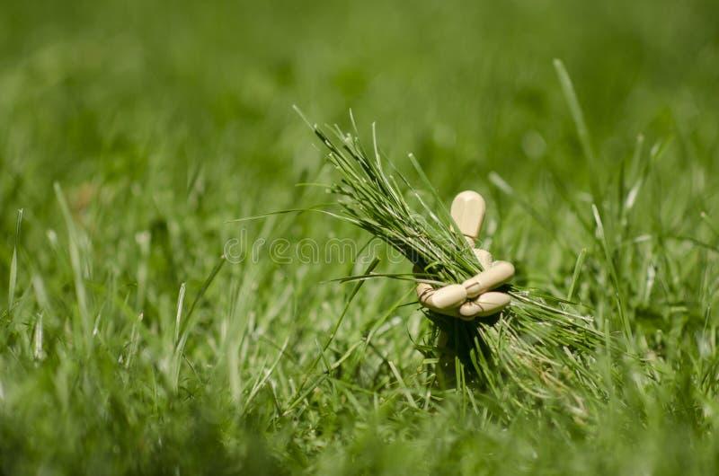 Manichino di legno con il covone dell'erba in mani immagine stock libera da diritti