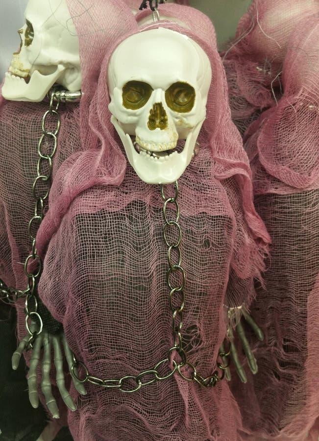 Manichino spettrale di scheletro immagine stock libera da diritti