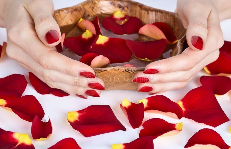 Manicura del balneario con los pétalos color de rosa foto de archivo