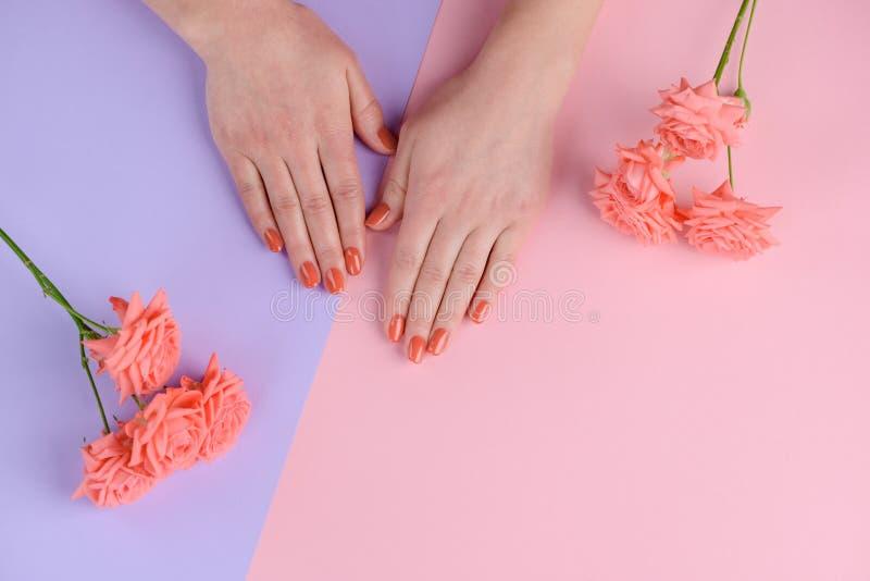 Manicura simple y manos preparadas imagen de archivo