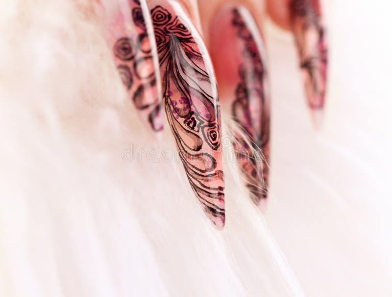 manicure красивейшего близкого ногтя людской вверх стоковые изображения rf