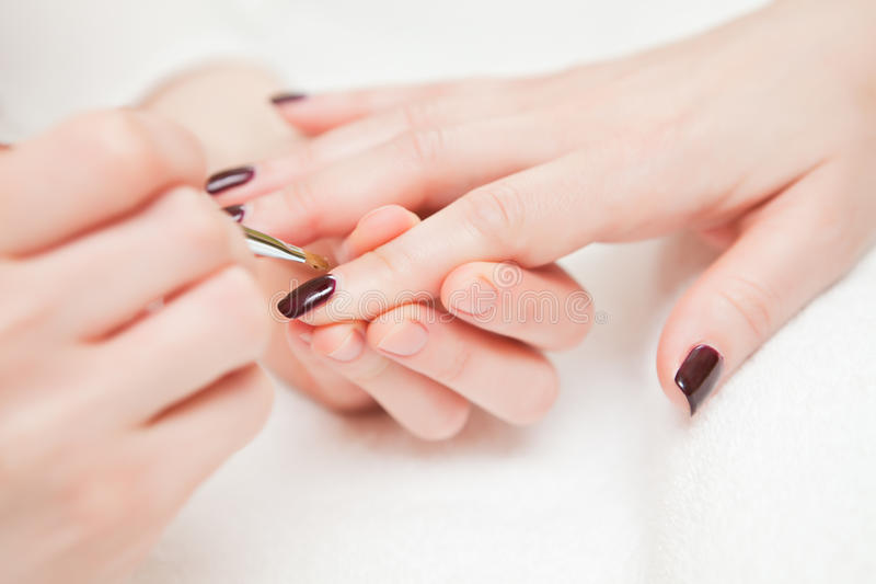Manicure obraz stock