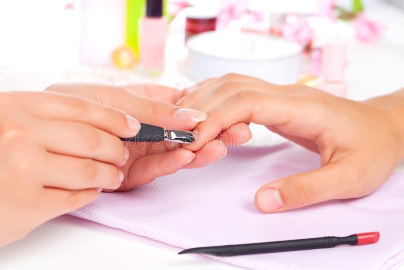 Manicure. royaltyfria bilder